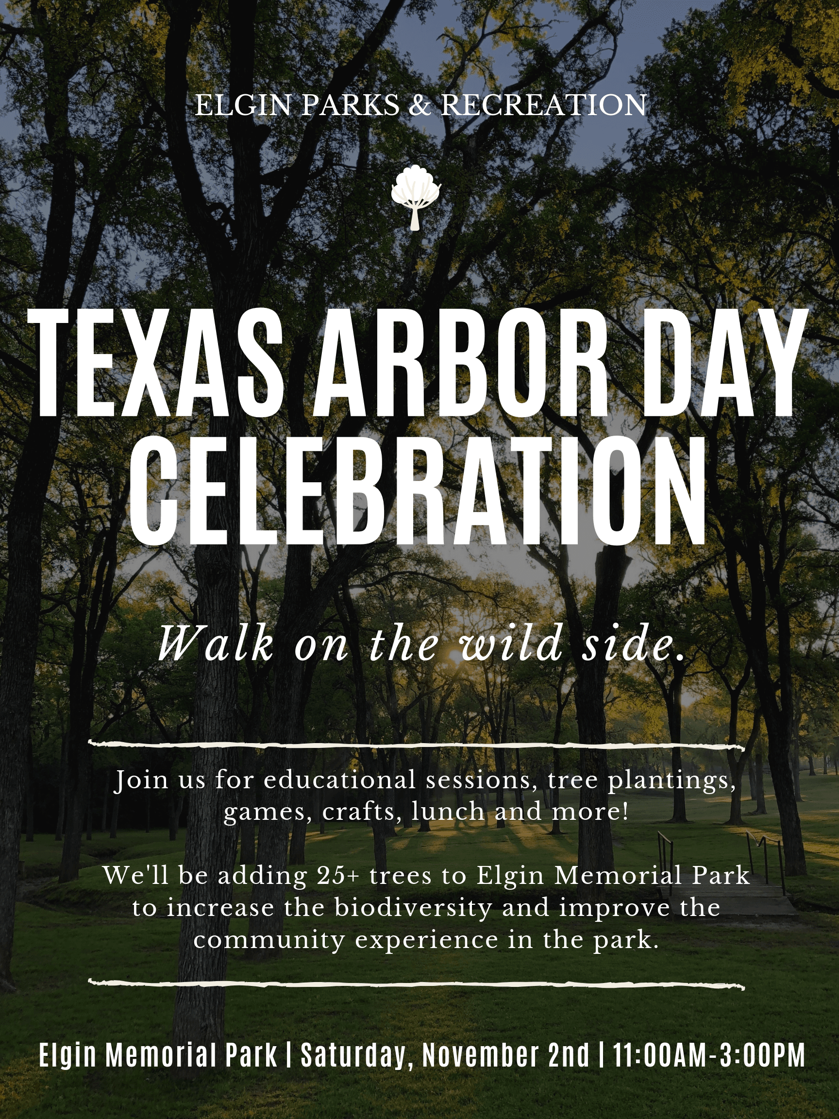 Texas Arbor Day Poster